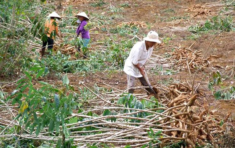 Xây dựng nông thôn mới vùng miền núi: Giải quyết khó khăn, tạo hiệu ứng lan tỏa