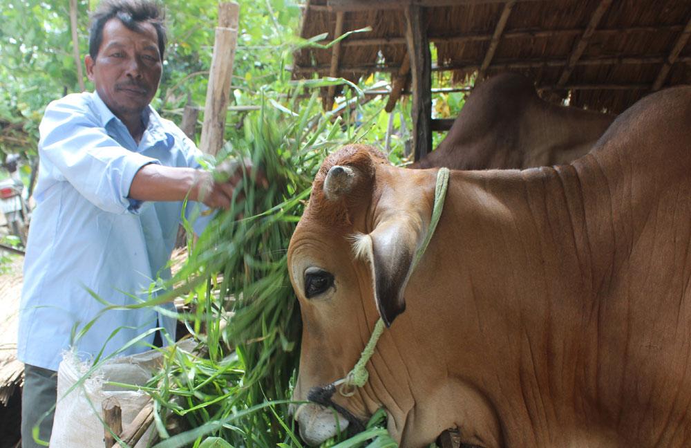 Chương trình 135: Hỗ trợ xây dựng nông thôn mới vùng miền núi